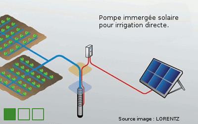 pompe irrigation solaire Lorentz immergée