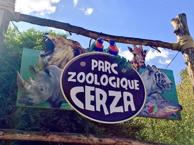 Installation d'une pompe solaire pour le bassin des ours polaires du zoo de Cerza