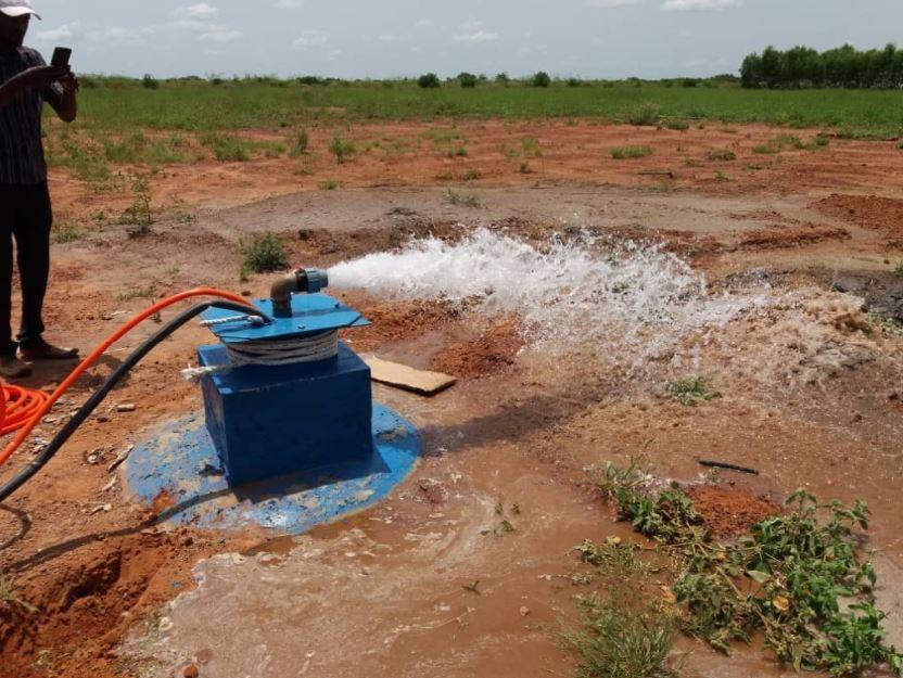 Pompage solaire au Niger pour 30 hectares de maraîchage en irrigation