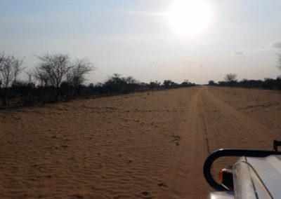 desert-botswana