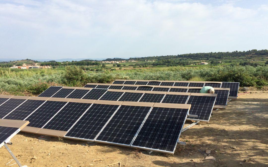 Le pompage solaire pour l'irrigation de plusieurs parcelles d'oliviers en Provence