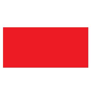 fiamm-logo