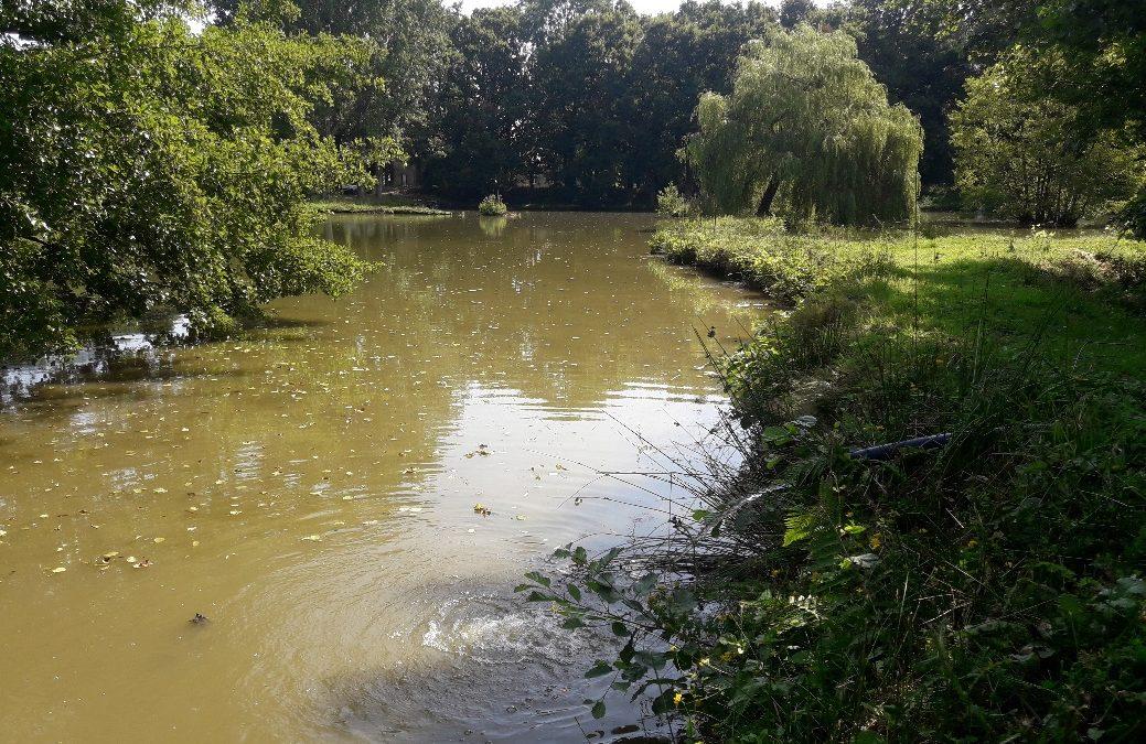 Réalimentation d'un étang dans le Calvados