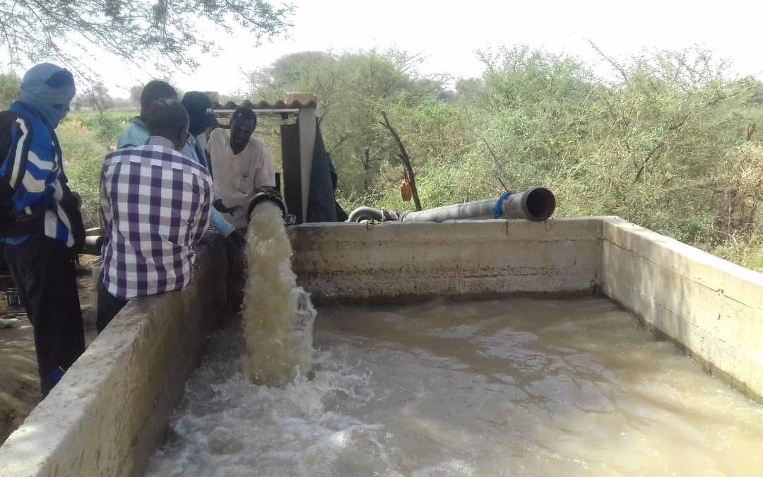Pompage solaire irrigation grand débit en Mauritanie